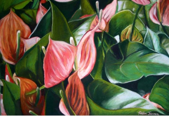 Hawaii Flower paintings